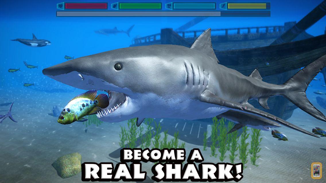 Screenshot - Ultimate Shark Simulator