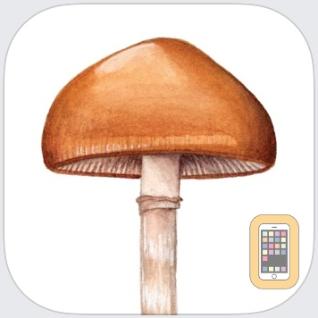 Mushroom Guide - North America by Julie Johnson (Universal)