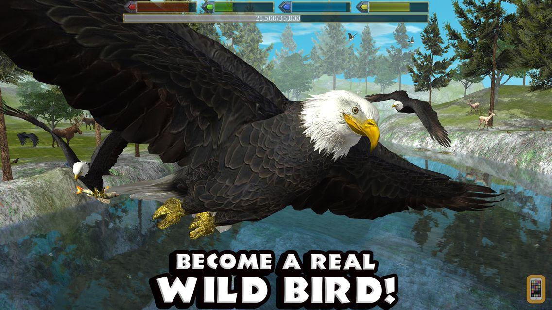 Screenshot - Ultimate Bird Simulator