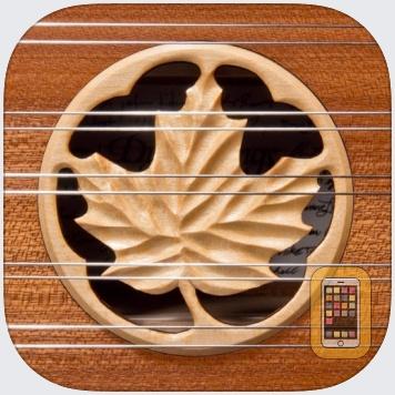 Dusty Strings D550 Dulcimer by Michael Eskin (iPad)