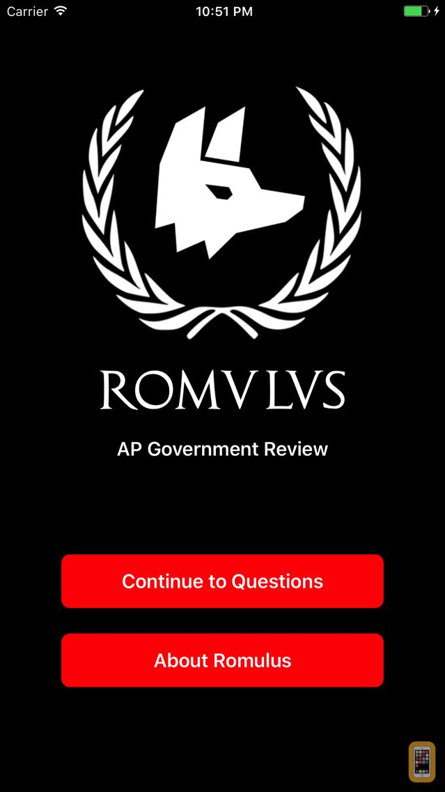 Screenshot - AP Government Review