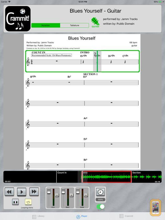 Screenshot - Crammit Player for iPad