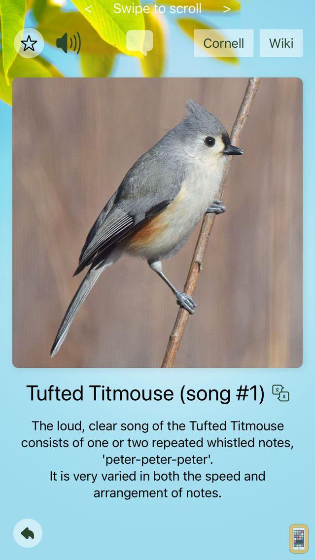 Screenshot - Chirp! Bird Songs USA +