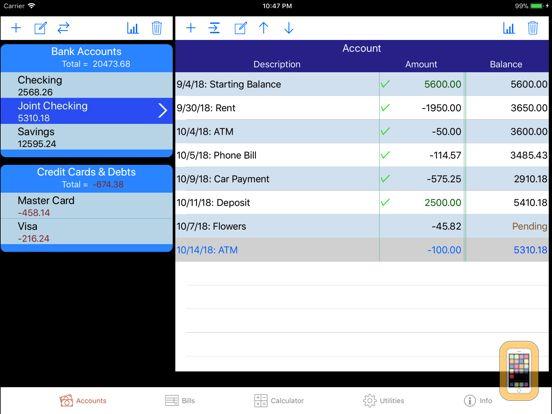 Screenshot - iCheckBalance for iPad