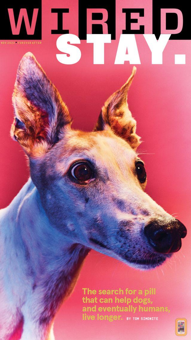 Screenshot - WIRED Magazine