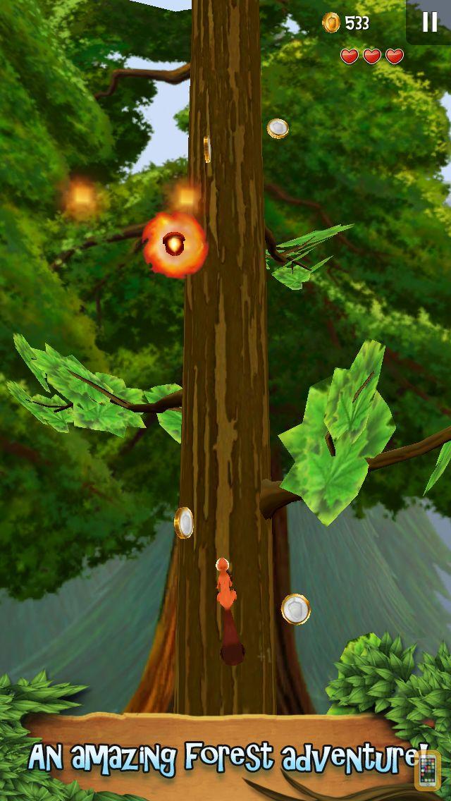 Screenshot - Nuts!: Infinite Forest Run