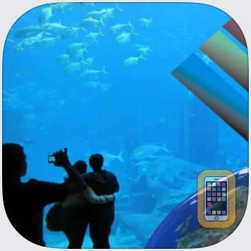 Aquarium Videos by Pocketkai (Universal)