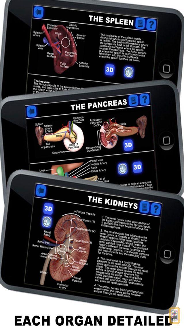 Screenshot - Anatomy 3D - Organs