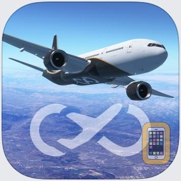 Infinite Flight by Flying Development Studio LLC (Universal)
