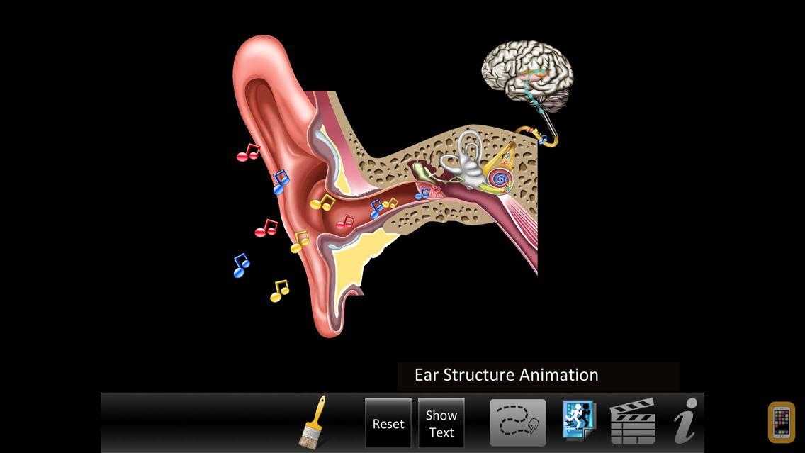 Screenshot - Ear ID