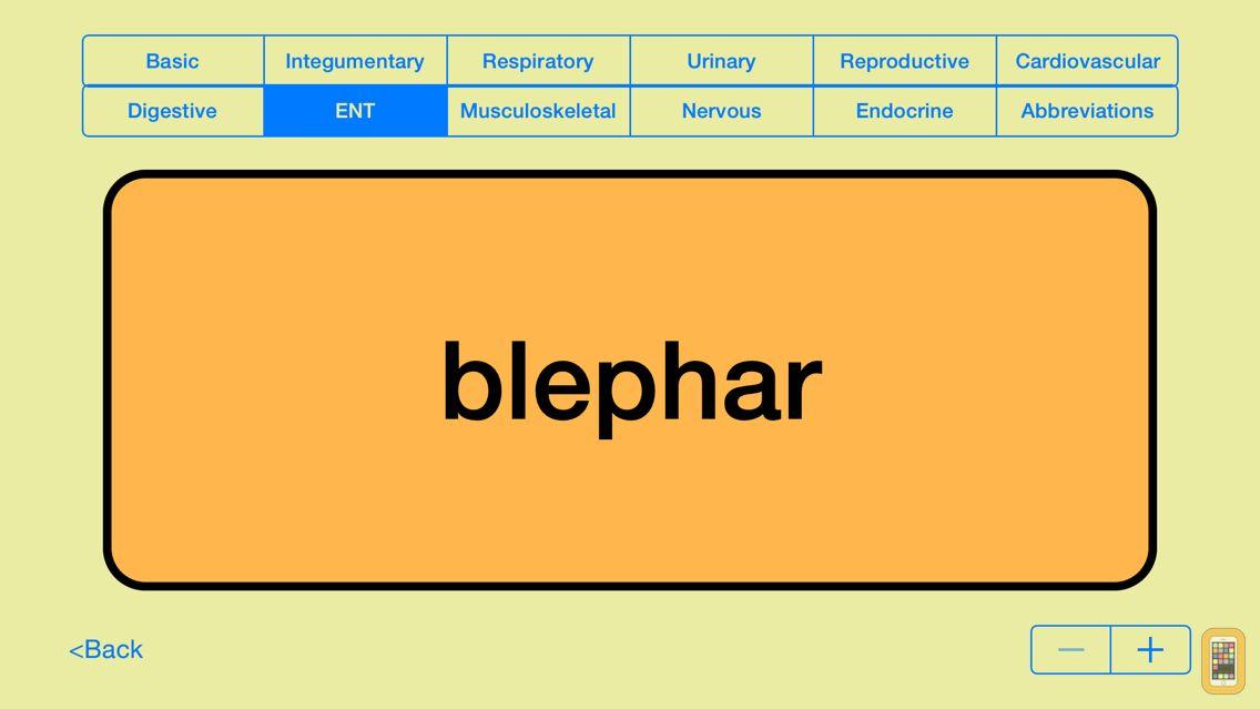 Screenshot - Medical Terms - Flashcards