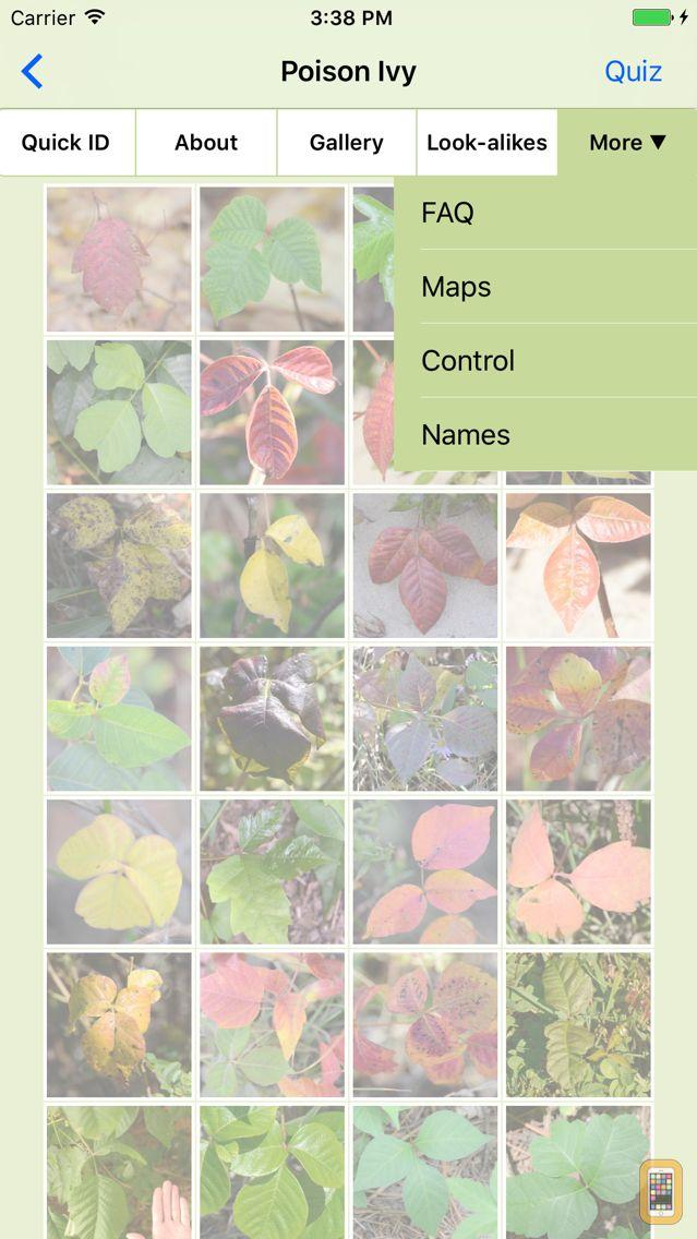 Screenshot - Rash Plants