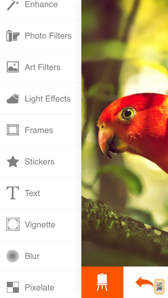 Screenshot - Phoenix Photo Editor