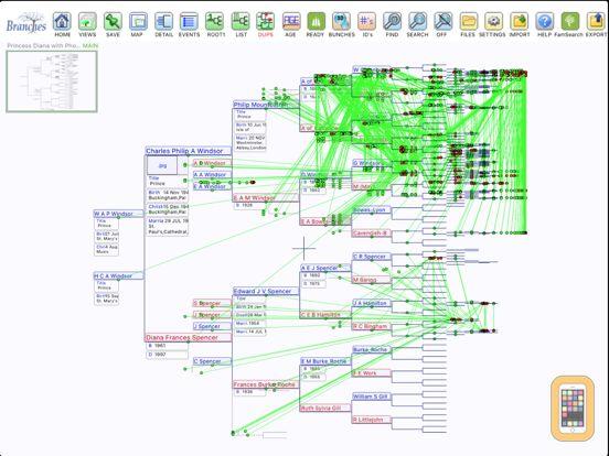 Screenshot - Branches Pro