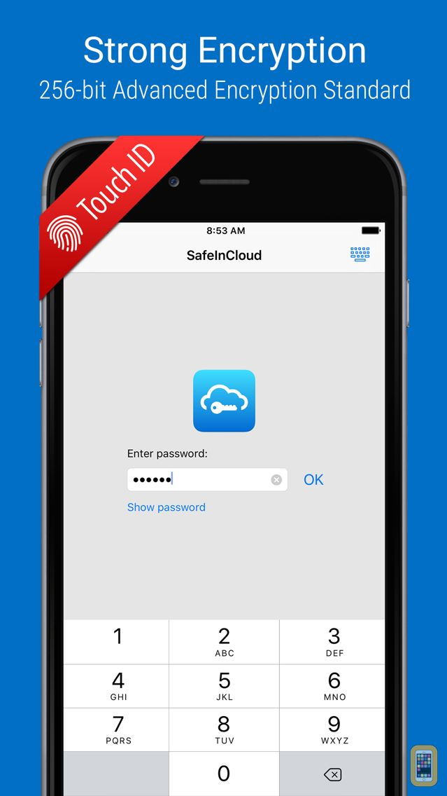 Screenshot - SafeInCloud Pro