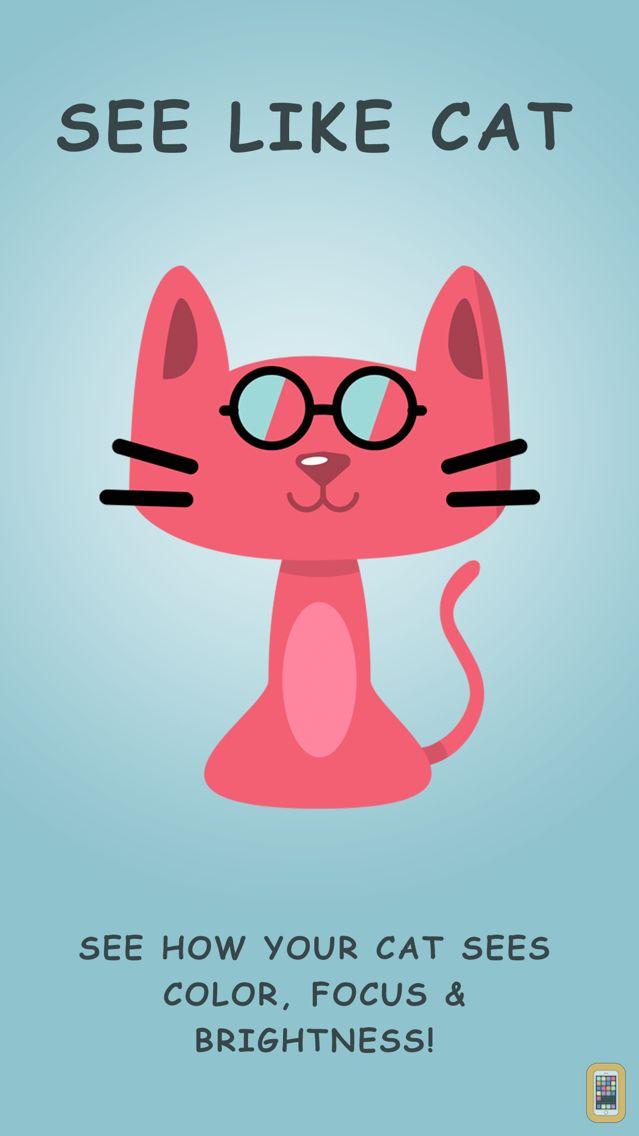 Screenshot - Cat Vision HD