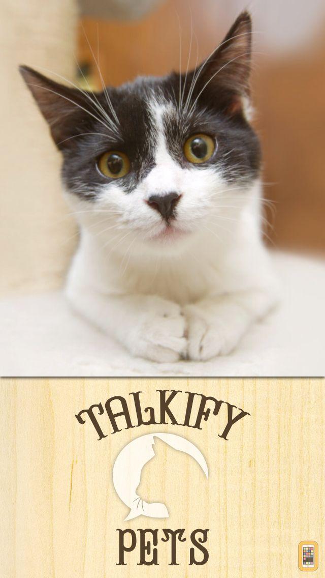 Screenshot - Talkify Pets