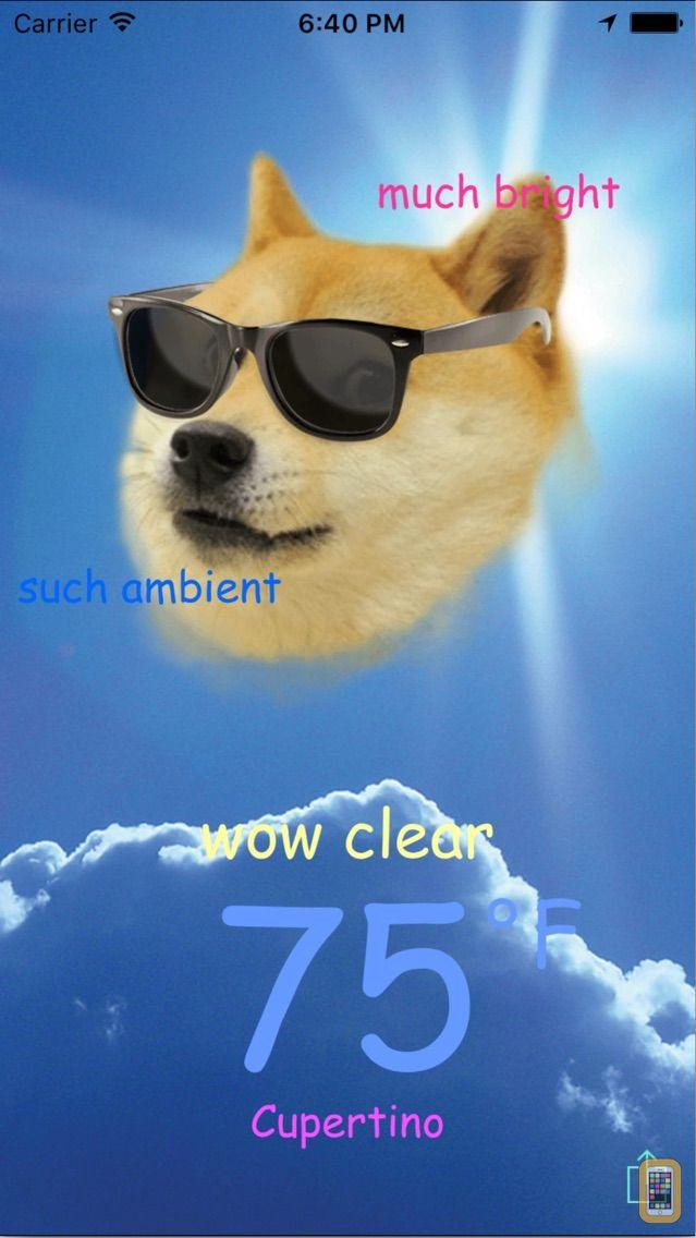 Screenshot - Doge Weather