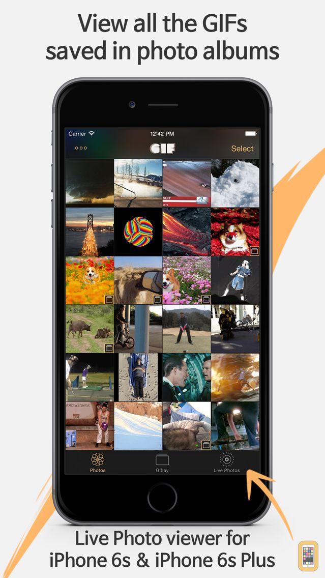 Screenshot - Giflay - GIF Viewer