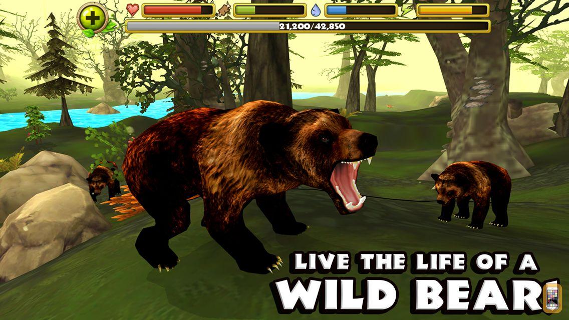 Screenshot - Wildlife Simulator: Bear