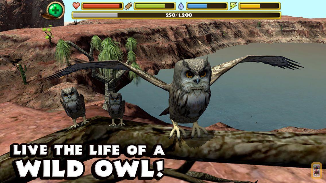 Screenshot - Owl Simulator