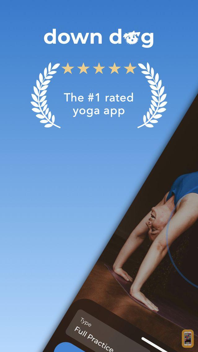 Screenshot - Yoga | Down Dog